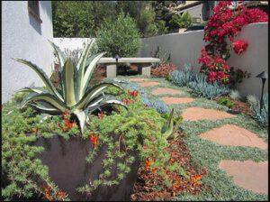 Landscape Service La Mesa, Ca
