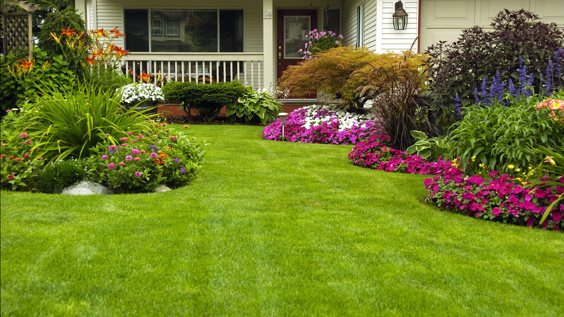 lawn maintenance san diego